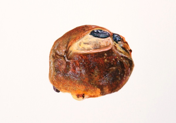 Roisinbrötchen, Gouache on Paper, 6 5/8 x 4 3/4 inches