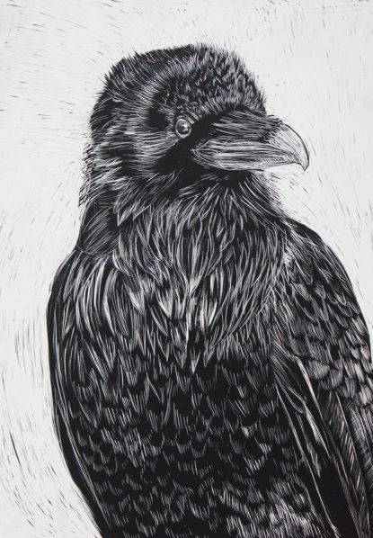 Crow, Scratchboard Drawing, 5 x 7 inches
