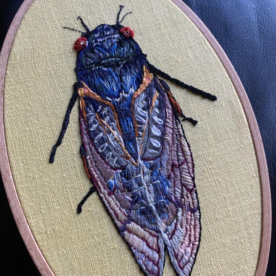 Cicadas on theBrain